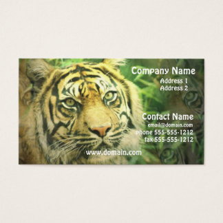 Siberian Tiger Business Card