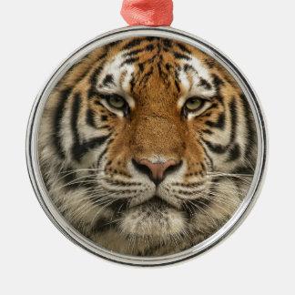 Siberian Tiger Christmas Ornament