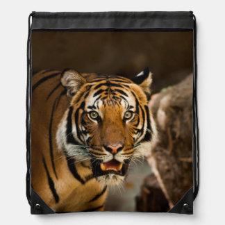 Siberian Tiger Drawstring Backpacks