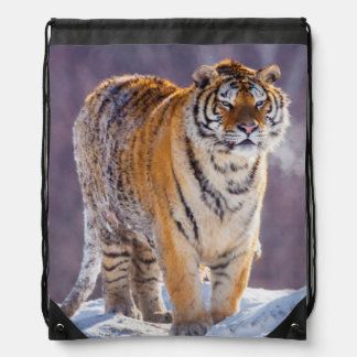 Siberian tiger in snow, China Drawstring Bag
