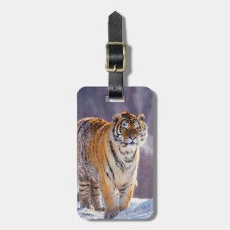 Siberian tiger in snow, China Luggage Tag