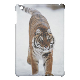 Siberian Tiger In Snow iPad Mini Cover