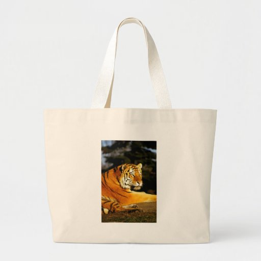 Siberian Tiger in the evening Canvas Bags