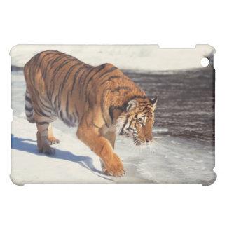 Siberian tiger iPad mini covers
