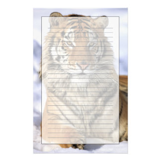 Siberian Tiger, Panthera tigris altaica, Asia Stationery