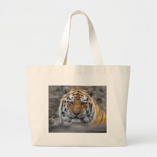 Siberian Tiger Photograph Large Tote Bag