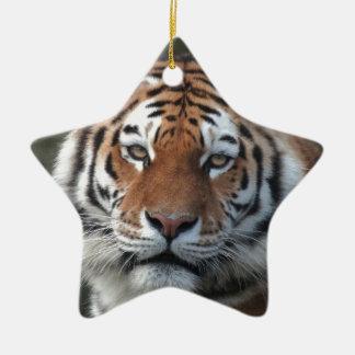Siberian Tiger Portrait Ceramic Star Decoration