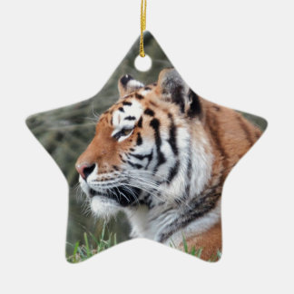 Siberian Tiger Portrait Christmas Ornament