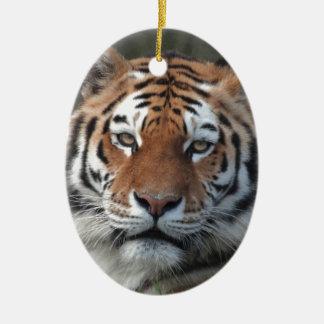 Siberian Tiger Portrait Christmas Ornament