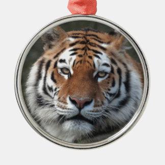 Siberian Tiger Portrait Silver-Colored Round Decoration