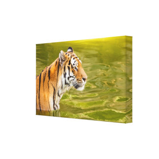 SIBERIAN TIGER WOOD WALL ART