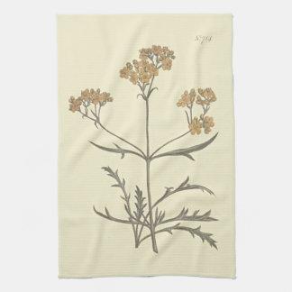 Siberian Valerian Botanical Illustration Tea Towel