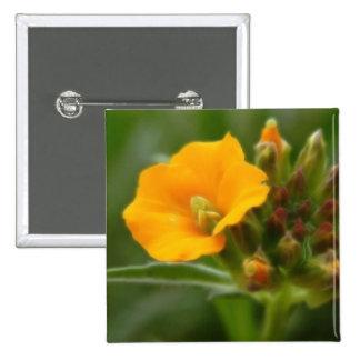 Siberian Wallflower Buds And Flower Pin