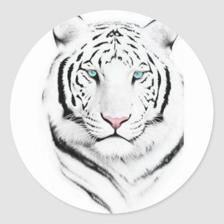 Siberian White Tiger Classic Round Sticker