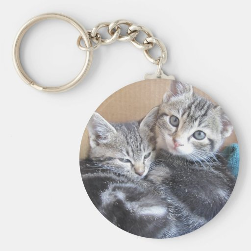 Sibling Kitties Keychains