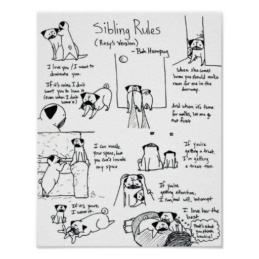 Sibling Rules (Younger Pug Version) Poster