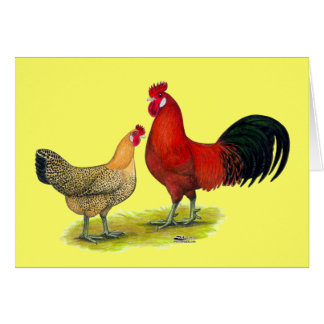 Sicilian Buttercup Chickens Card