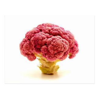 Sicilian Purple Broccoli Postcard