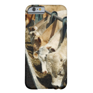 Sicily, Italy Barely There iPhone 6 Case