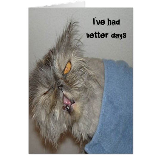 Sick kitty card