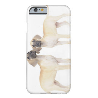 side by side,small group of animals,togetherness barely there iPhone 6 case