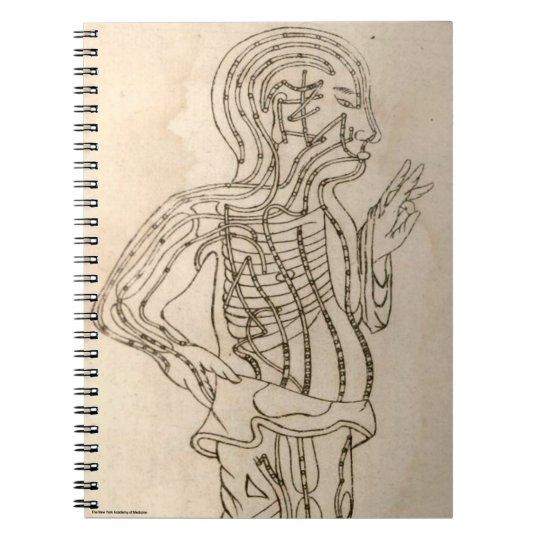 Side-facing Figure Notebooks