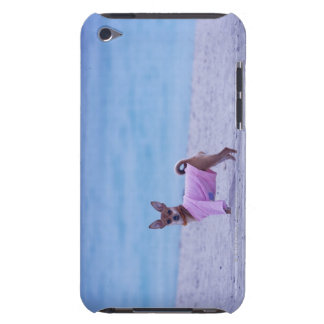 Side profile of a dog standing on the beach, iPod touch cover