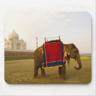 Side profile of an elephant, Taj Mahal, India Mouse Pad