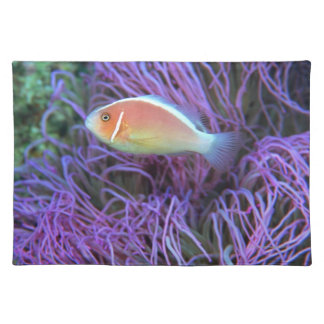 Side view of a pink anemone fish, Okinawa, Japan Placemat