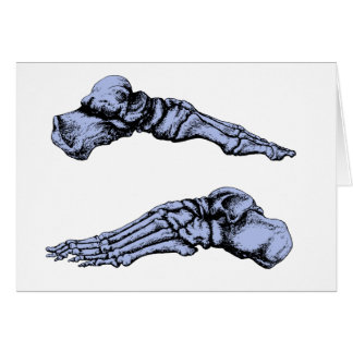 Side view of bones of the feet - deep blue greeting card