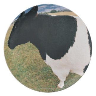 Side View of Friesian Cow Plate