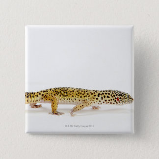 Side view of leopard gecko lizard 15 cm square badge