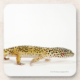 Side view of leopard gecko lizard beverage coaster