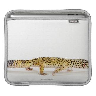 Side view of leopard gecko lizard iPad sleeve