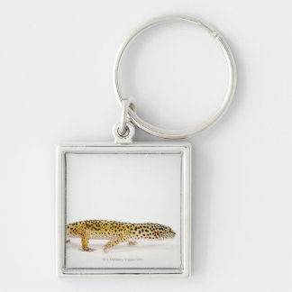 Side view of leopard gecko lizard key ring