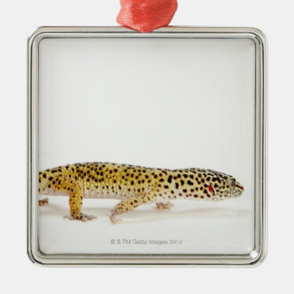Side view of leopard gecko lizard Silver-Colored square decoration