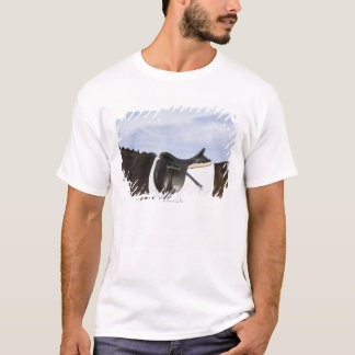 side view of saddled horse T-Shirt