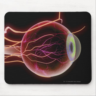 Side view of the blood vessels of the eye mouse mat