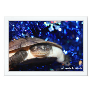 Sideneck turtle looking at viewer on blue tinsel personalized invites
