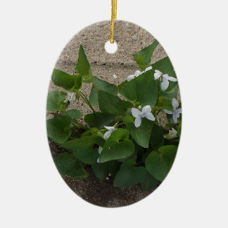 Sidewalk Flower Ceramic Oval Decoration