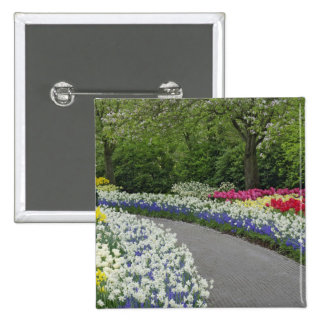Sidewalk pathway through tulips and daffodils, 15 cm square badge