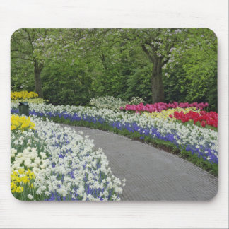 Sidewalk pathway through tulips and daffodils, mouse pad