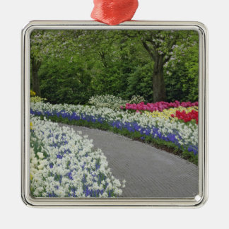 Sidewalk pathway through tulips and daffodils, Silver-Colored square decoration