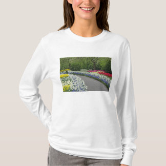 Sidewalk pathway through tulips and daffodils, T-Shirt