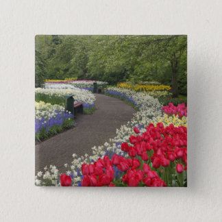 Sidewalk through tulips, daffodils, and 15 cm square badge