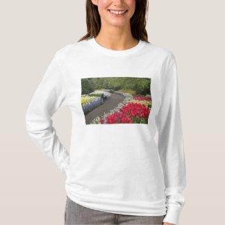 Sidewalk through tulips, daffodils, and T-Shirt
