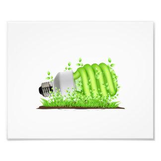 sideways cfl light bulb plants ecology.png photo print