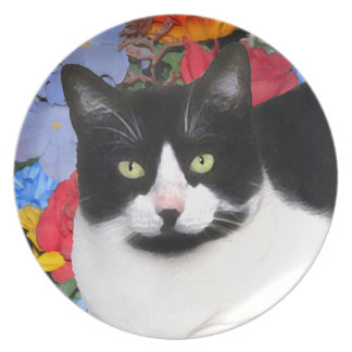 """Sidney"" Cat Plate"
