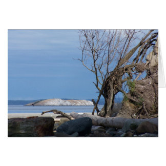 Sidney Spit Greeting Cards