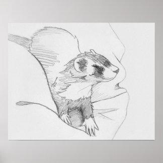 """""""Siduri"""" Ferret Drawing Poster"""